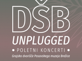 dsb_unplugged_ig
